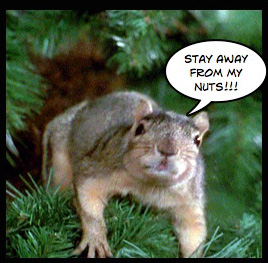 Christmas Vacation Squirrel.The Lost Highway S B Movie Reviews And Cult Films Blog